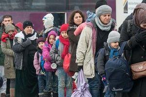 Đức thất bại trong việc trục xuất 27.000 người xin tị nạn