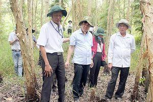 Hậu Giang: Kiên quyết không để xảy ra cháy rừng