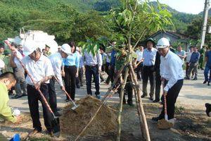 Đà Nẵng : Phát động 'Tết trồng cây đời đời nhớ ơn Bác Hồ' nhân dịp Xuân Kỷ Hợi 2019