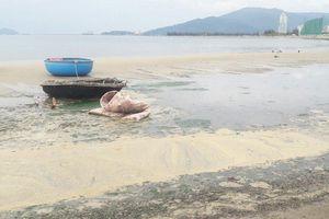 Nước thải sủi bọt vàng, bốc mùi hôi bủa vây bờ biển Đà Nẵng