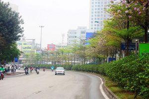Đường Láng 'khoác áo mới' trước ngày Hội nghị Thượng đỉnh Mỹ - Triều