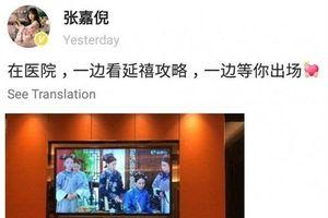 Vợ chồng 'Thuận Tần' Trương Gia Nghê lại khiến dân tình điên đảo trong loạt ảnh siêu ngọt