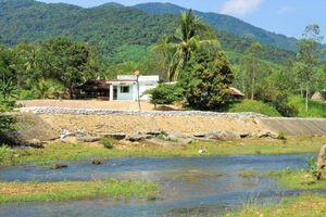 Phù Cát (Bình Định): Bờ sông La Tinh sạt lở nghiêm trọng