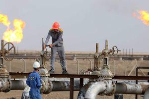 Giá dầu thế giới 26/2: Đột ngột quay đầu giảm mạnh sau tuyên bố của Tổng thống Trump