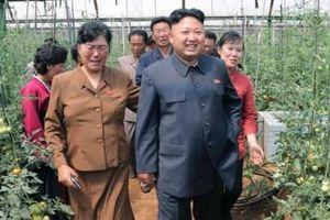 Nông nghiệp Triều Tiên dưới thời ông Kim Jong - un có gì khác biệt?