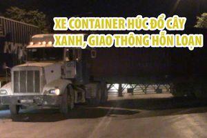 Xe container húc đổ 2 cây xanh trên vỉa hè, giao thông hỗn loạn lúc 3 giờ sáng