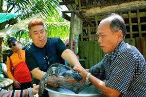 Kiên Giang: U70 nuôi cua đinh nặng 25 ký, du khách tới xem ầm ầm