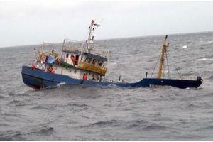 Bình Định: Tàu cá va chạm tàu hàng, 1 ngư dân tử nạn, 1 mất tích
