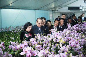Phái đoàn cấp cao nhà nước Triều Tiên thăm Hợp tác xã Đan Hoài