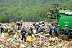 Đà Nẵng: Rác thải rắn chiếm tỷ lệ 16 – 17%