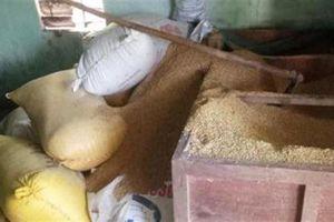 Gia đình mất 49 cây vàng: Trộm chỉ lục thùng lúa