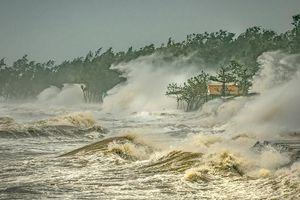 Việt Nam đạt giải Nhất cuộc thi ảnh 'Thời tiết và Khí hậu khu vực Ủy ban Bão'