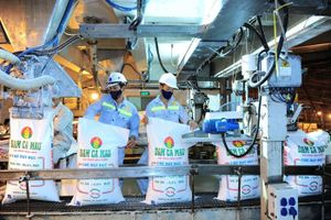 Xây dựng môi trường làm việc và đảm bảo an toàn lao động