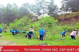 MTTQ Hương Sơn phấn đấu làm hơn 38km đường GTNT trong 3 tháng