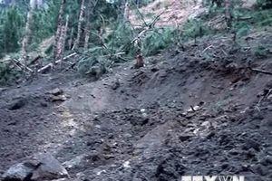 Ấn Độ không có kế hoạch tiếp tục không kích gần biên giới Pakistan