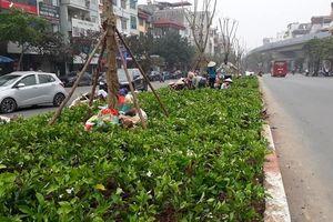 Phường Thịnh Quang thực hiện phong trào vì một đô thị Xanh- Sạch- Đẹp