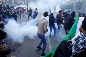 Algeria: 183 người bị thương trong các cuộc biểu tình