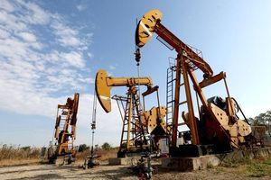 Giá dầu thô 4/3: Đồng loạt phục hồi nhẹ, dầu brent lên mức 65 USD/thùng