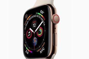 CEO Apple tiết lộ về loạt sản phẩm sắp ra mắt