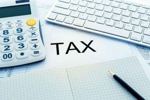Tổng cục Thuế hỗ trợ trực tuyến quyết toán thuế thu nhập doanh nghiệp