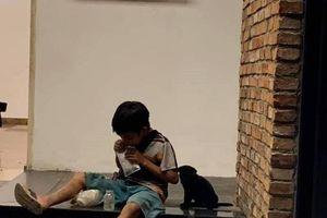 Câu chuyện về cậu bé đường phố chia sữa cho chú chó nhỏ khiến dân mạng xúc động