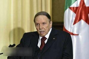 Tổng thống Algeria cam kết cầm quyền 1 năm nếu đắc cử