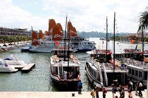Du khách Nhật trượt chân tử vong tại cảng Tuần Châu