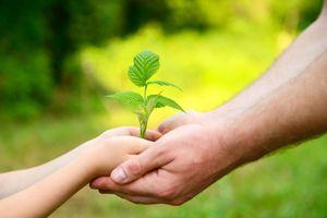 Khi sự sống được sẻ chia, cuộc đời sẽ tiếp diễn
