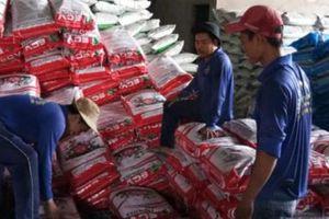 'Bát nháo' thị trường phân bón: Nhà nhà, người người làm NPK (bài 1)