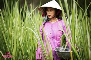 'Đồng hương Trà Vinh' Ngọc Trinh lên tiếng xin được 'tầm sư học võ' từ Ngô Thanh Vân để trở thành đả nữ