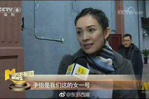 Phim điện ảnh 'Nhà leo núi' quy tụ dàn diễn viên quá đỉnh: Thành Long, Ngô Kinh, Chương Tử Di, Hồ Ca