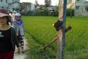 Quảng Nam: Hai vợ chồng thương vong nghi do bị giật điện