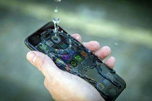 iPhone XI có thể hoạt động bình thường dưới nước