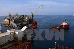 Giá dầu tại châu Á giảm 0,6% khi dự trữ dầu thô của Mỹ tăng