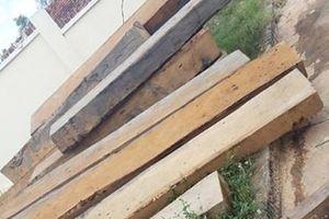Hàng chục mét khối gỗ tang vật … biến mất