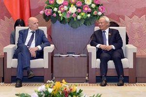 Phó Chủ tịch Quốc hội Uông Chu Lưu tiếp Chủ tịch Nhóm Nghị sĩ hữu nghị Bỉ - Việt Nam