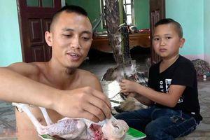 Công an xác minh thông tin anh em Tam Mao giết thịt chim quý để làm video