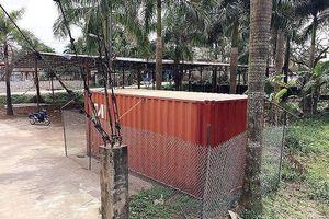 Chưa rõ thời điểm mở đấu giá cây sưa 'trăm tỷ' ở Hà Nội