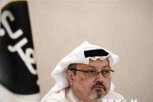 EU ký tuyên bố lên án hồ sơ nhân quyền của Saudi Arabia tại LHQ