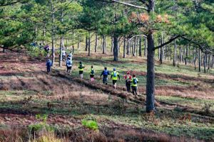 Thử thách cùng Giải Siêu Marathon Quốc tế Dalat Ultra Trail 2019