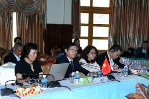 Thúc đẩy phát triển kinh tế Khu vực Tam giác phát triển CLV