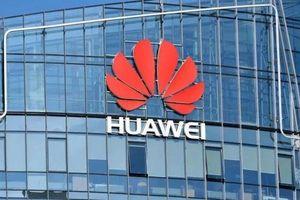 Tập đoàn Trung Quốc Huawei không kiện chính phủ Australia