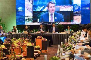 APEC 2019: 'Kết nối con người, vun đắp tương lai'