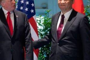 TQ lo ông Tập đến Mỹ gặp ông Trump rồi ra về 'tay trắng'