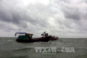 Sóng đánh chìm xuồng máy, nữ ngư dân trôi dạt trên biển