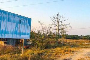 Công ty Thiên Phú tố cáo Văn phòng công chứng vụ đấu giá khu dân cư Hòa Lân