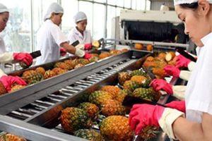 Xuất khẩu rau quả của Việt Nam liên tục giảm trong hai tháng đầu năm