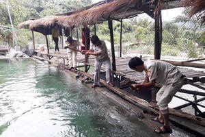 Cưỡng chế, tháo dỡ khu du lịch xây dựng trái phép ở Đà Nẵng