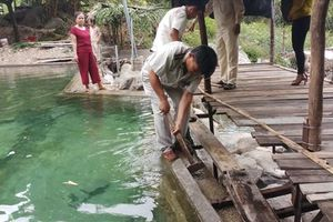 Đà Nẵng: Tháo dỡ hạng mục xây dựng trái phép ở khu vực suối Lương