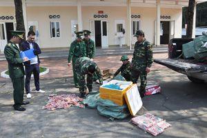 Đồn Biên phòng Hải Hòa bắt giữ, tiêu hủy 375kg sản phẩm động vật nhập lậu